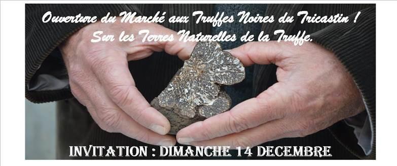 marche truffe2014